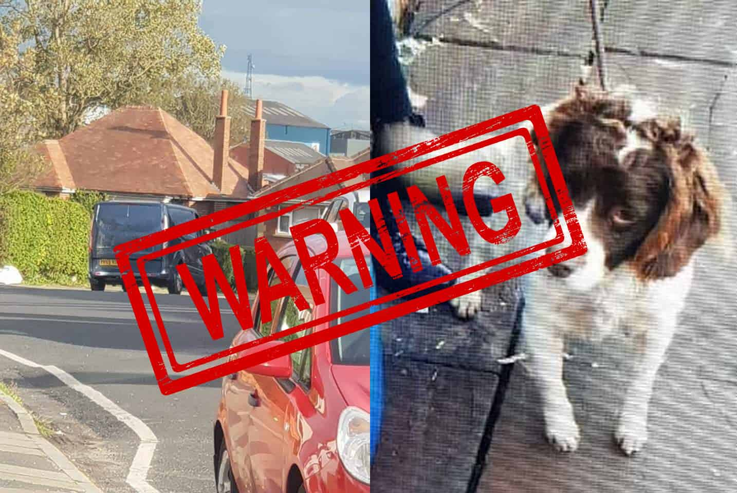 BEWARE: Man attempting to lure people into his van may try to steal your dog